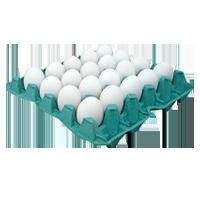 Ovos Brancos com 20